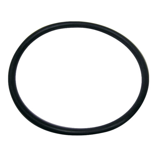 Fluidra WaterLinx FILTER LID O-RING