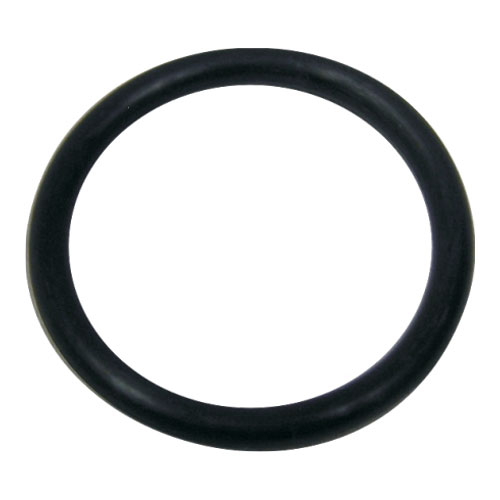 Fluidra WaterLinx FILTER TANK FITTING O RING