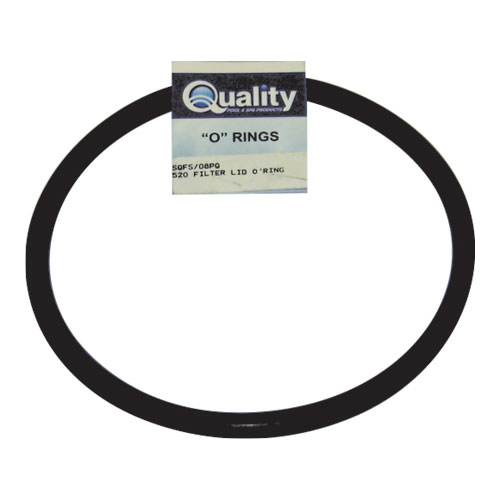 Fluidra WaterLinx FILTER LID O RING CARDED