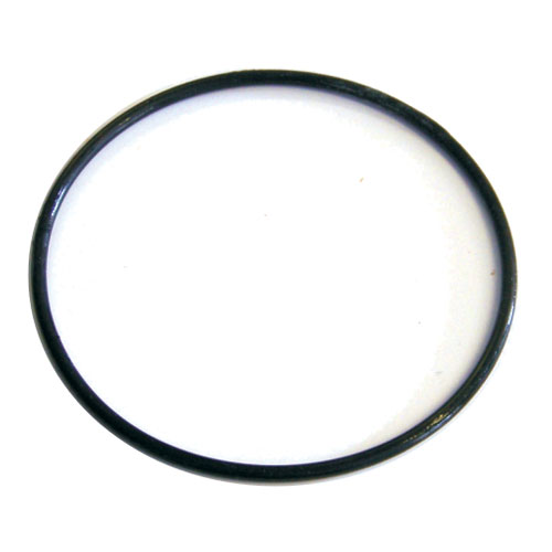 Fluidra WaterLinx CARTRIDGE FILTER LID O-RING