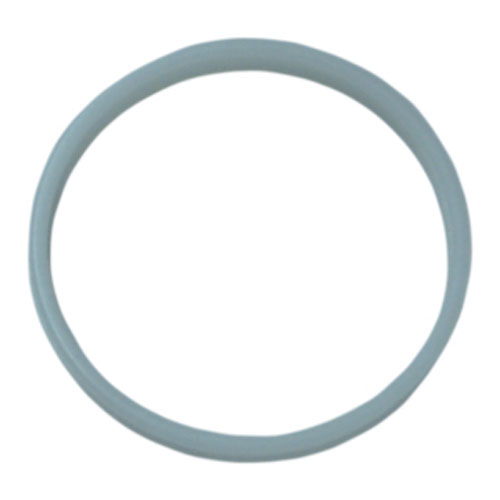 Fluidra WaterLinx RETAINING RING